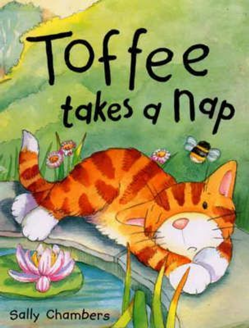 Chambers, Sally / Toffee Takes a Nap (Children's Picture Book)