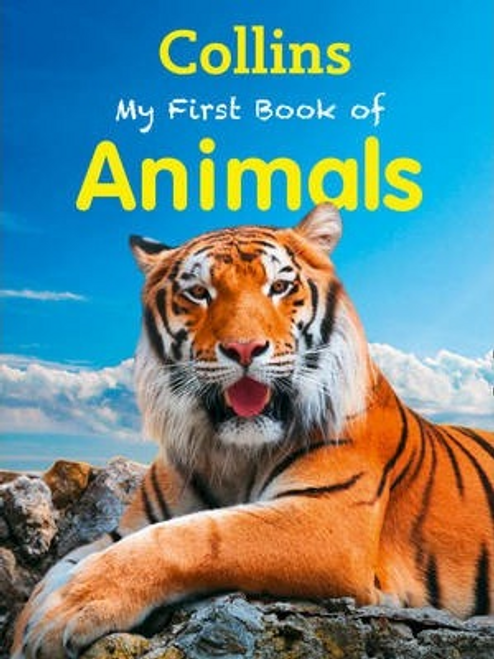 Morgan, Sally / My First Book of Animals (Children's Picture Book)