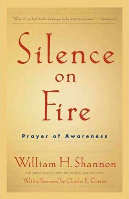 Shannon, William / Silence on Fire (Large Paperback)