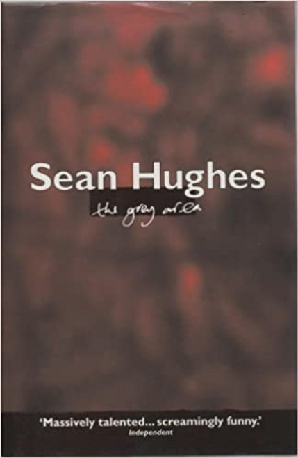 Hughes, Sean / The Grey Area (Hardback)