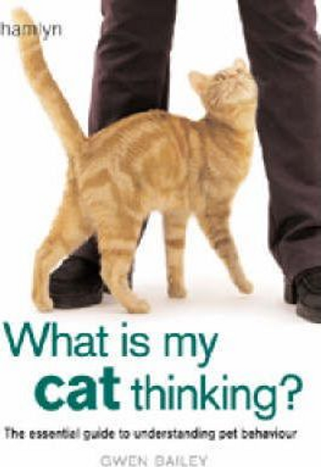 Bailey, Gwen / What is my Cat Thinking? (Hardback)