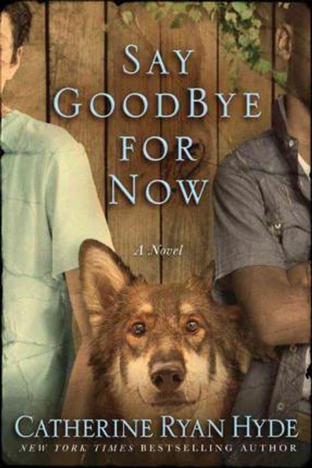 Hyde, Catherine Ryan / Say Goodbye for Now (Large Paperback)
