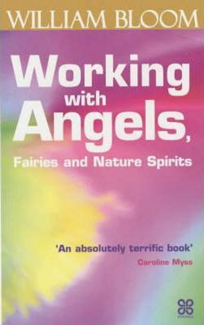Bloom, William / Working With Angels, Fairies And Nature Spirits (Large Paperback)
