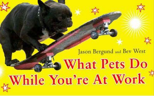 Bergund, Jason / What Pets Do While You're At Work