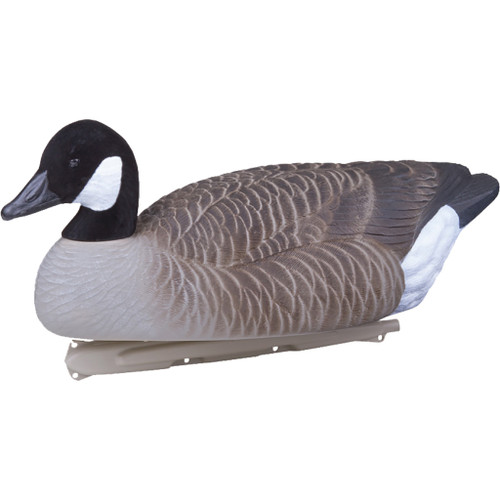 Flambeau Water Pack Canada Goose Decoy 4 Pk.