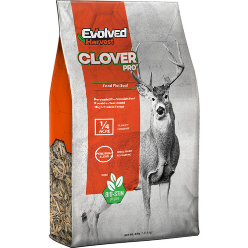 Evolved Clover Seed 4 Lb.
