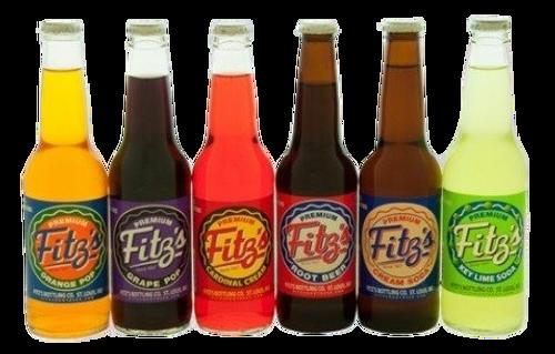 Fitz's Premium Sodas in a  Variety Pack  ||  12-Pack  || SummitCitySoda.com