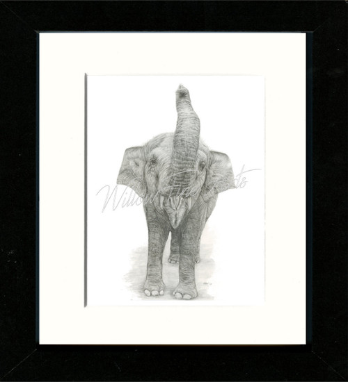 Black Framed Print  (Shown in size - 8x10inch)