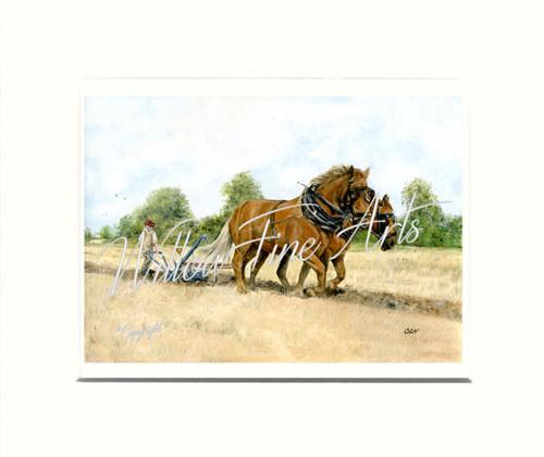 Mounted Print (Medium)