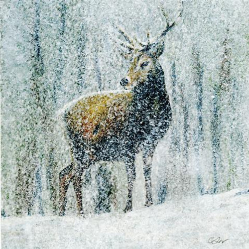 The Stag in Snow