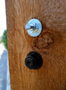 """OZCO OWT 3/4"""" Timber Bolt Compared to Stainless Bolt"""