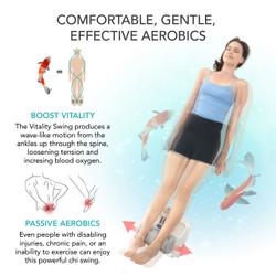 【メーカー再生品】腰痛・血行不良に金魚運動器 デラックス Vitality Swing (90日保証付き)
