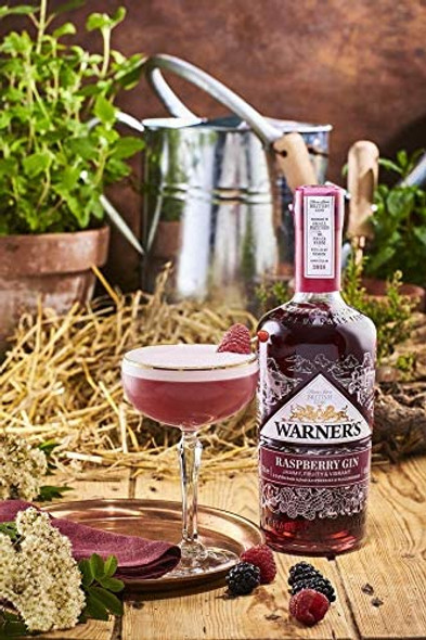 Warner's Raspberry Gin, 70cl perfectly served in gin glass