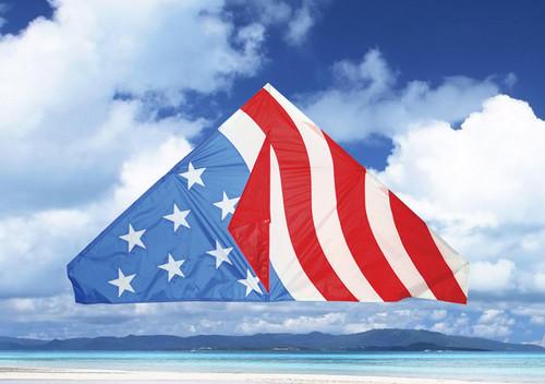 "Skydog Kites 11164 55"" USA Delta"