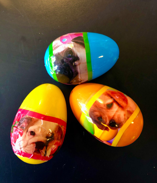 Puppy Surprise Easter Egg