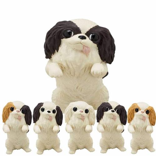Japanese Chin Dog Blind Box
