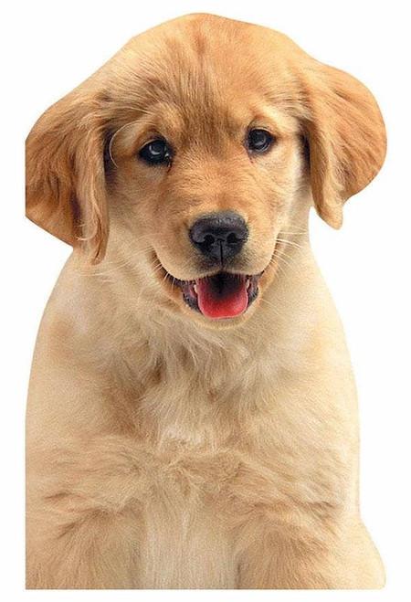 Golden Puppy Mini Notebook