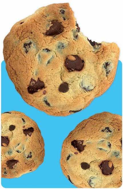 Chocolate Chip Cookie Mini Notebook