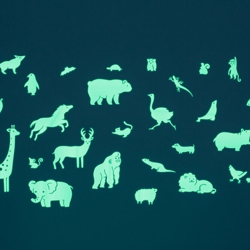 Glow in the Dark Wall Stickers: Animals