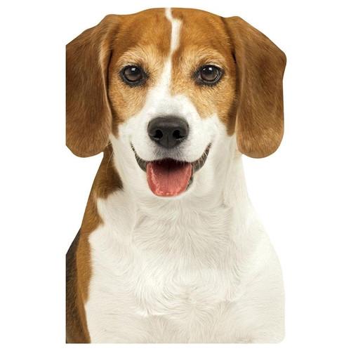 Beagle Mini Notebook