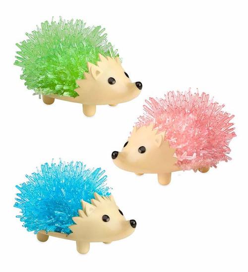 Hedgehog Crystal Growing Kit