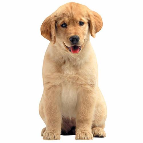 Golden Retriever Puppy Vinyl Sticker