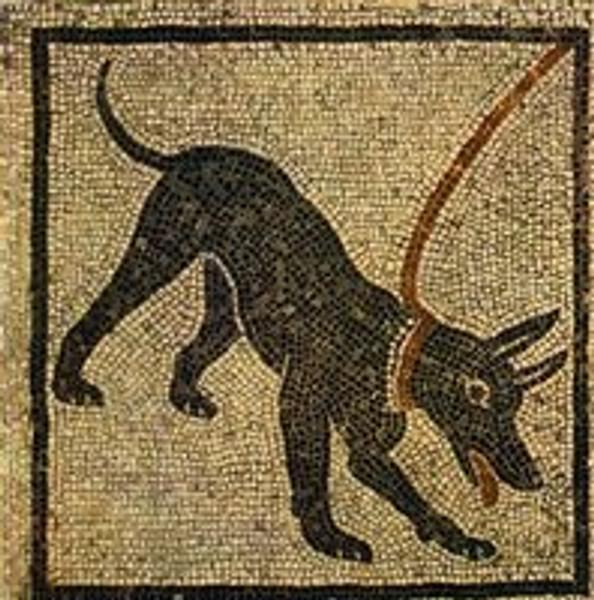 The History of Mosaic Art and Mosaic Tiles