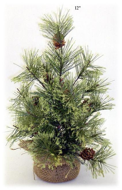 Smokey Pine Tree