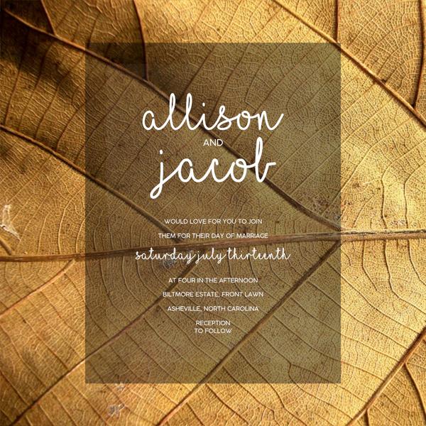Allison (clear)