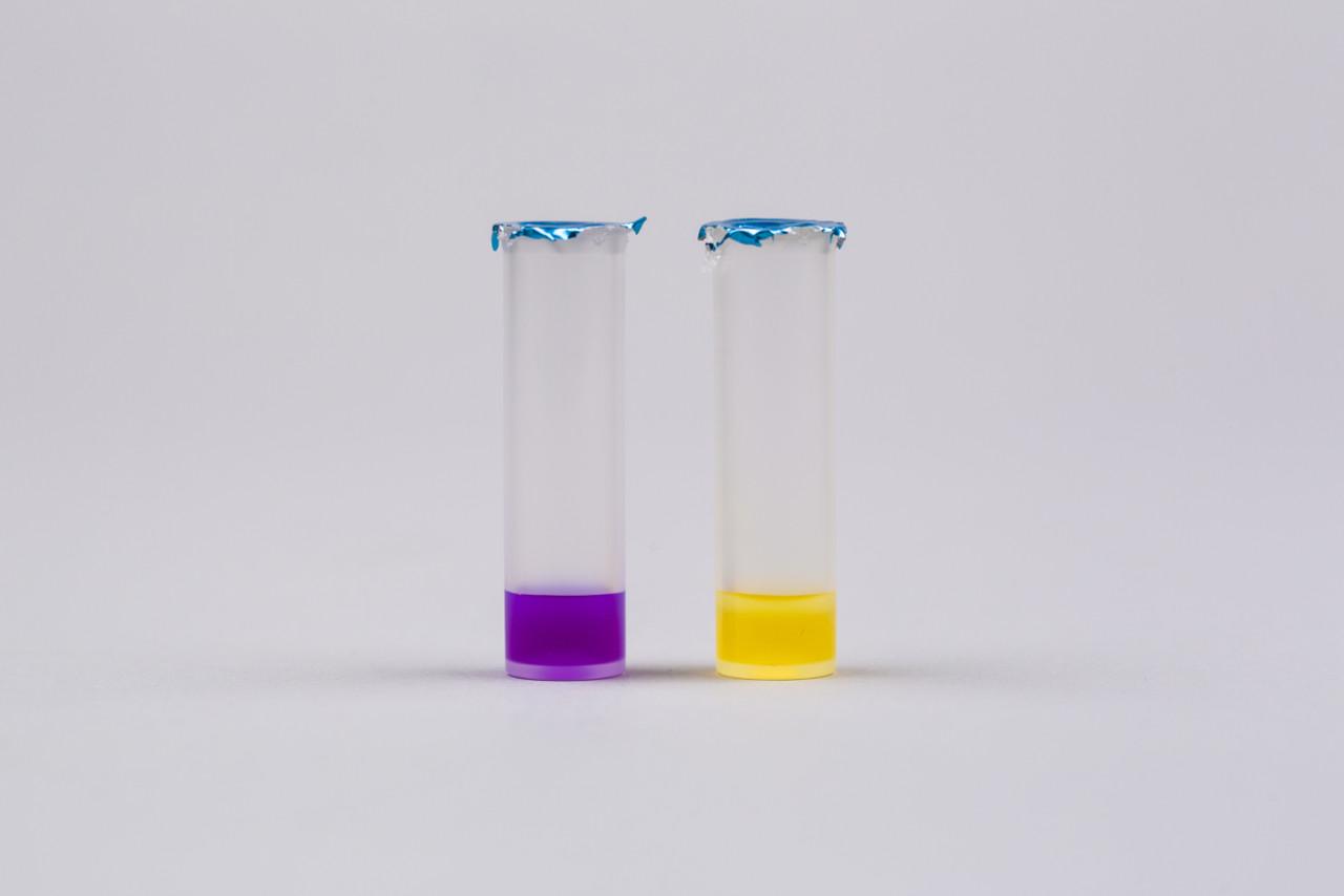 Biocide Rapide
