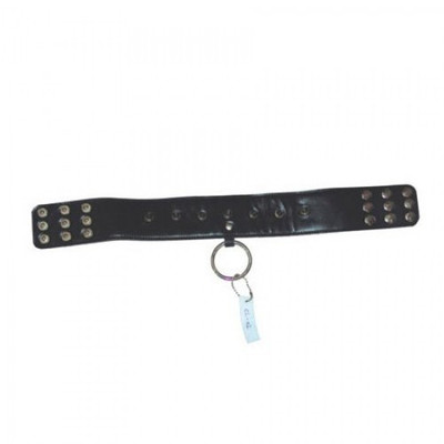 BDSM leather collar with rivets