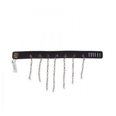 Black leather collar with chain