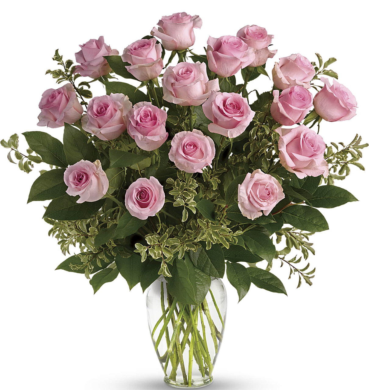 Hey Gorgeous Premium Spring Bouquet 18 Light Pink Roses Salvy The Florist