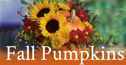 Fall Flowers In Ceramic Pumpkins