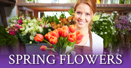 Spring Flowers from Salvy the Florist