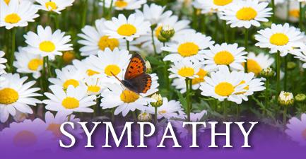 Salvy the Florist Spring Sympathy Arrangements