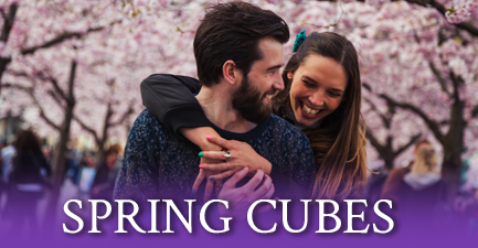 Spring Cube Flower Bouquets by Salvy the Florist