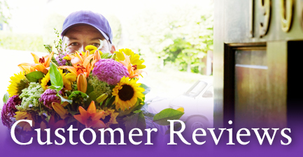 See What You Send Customer Reviews