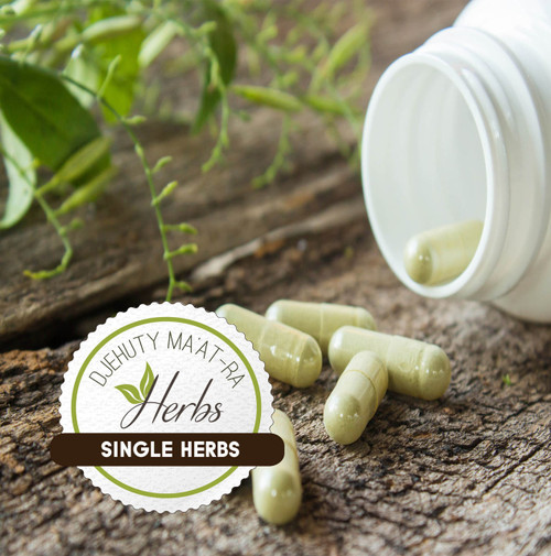 Black Seed & Chasque Seed - 100 Capsules