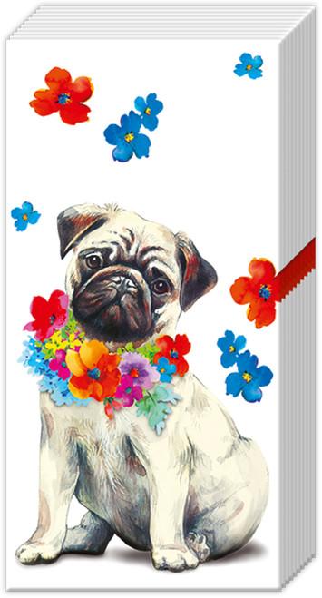 Alfred the Pug Dog Facial Pocket Tissue