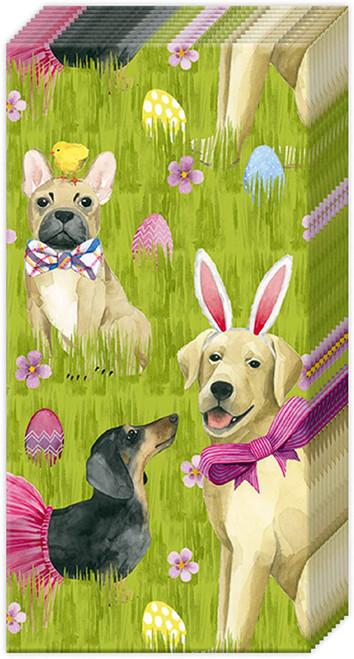 Easter Bunny Pocket Facial Tissue