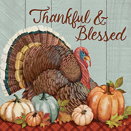 Turkey Thankful & Blessed Stoneware Coaster