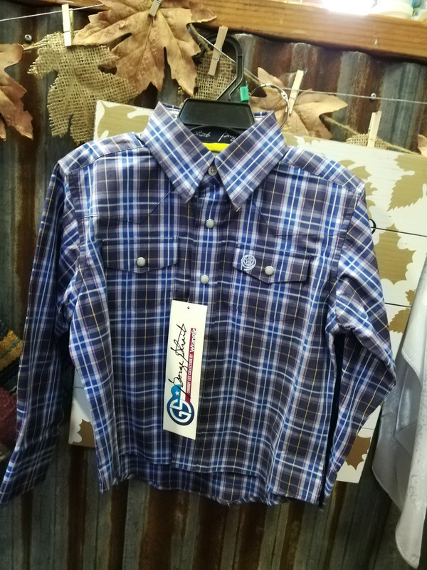 Vairous Sizes, Boys, Wrangler blue Western shirt