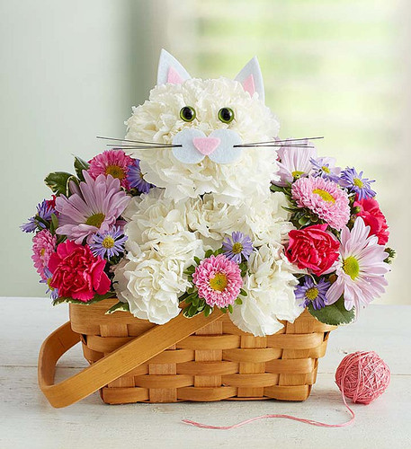 "EXCLUSIVE The cat's out of the bag... finally! Inspired by the success of our best selling a-DOG-able collection, we've created the purr-fect surprise for feline lovers of all ages. Crafted from crisp white carnations and a mix of colorful blooms inside a charming handled basket, this truly original kitten is sure to have everyone smitten. So go ahead, send one right meow!  We hand-design each arrangement, so colors, varieties and container may vary due to local availability One-sided arrangement of white carnations, pink Matsumoto asters, lavender daisy poms, hot pink mini carnations and purple monte casino; accented with variegated pittosporum Crafted in the shape of a cat, complete with ears, eyes and mouth with whiskers Artistically designed in a lined splitwood basket with handle; measures 7""H Arrangement measures approximately 11""H x 11""L"