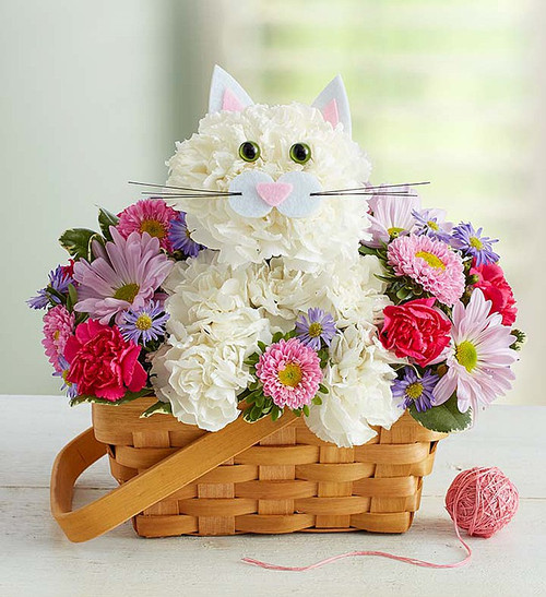 """EXCLUSIVE The cat's out of the bag... finally! Inspired by the success of our best selling a-DOG-able collection, we've created the purr-fect surprise for feline lovers of all ages. Crafted from crisp white carnations and a mix of colorful blooms inside a charming handled basket, this truly original kitten is sure to have everyone smitten. So go ahead, send one right meow!  We hand-design each arrangement, so colors, varieties and container may vary due to local availability One-sided arrangement of white carnations, pink Matsumoto asters, lavender daisy poms, hot pink mini carnations and purple monte casino; accented with variegated pittosporum Crafted in the shape of a cat, complete with ears, eyes and mouth with whiskers Artistically designed in a lined splitwood basket with handle; measures 7""""H Arrangement measures approximately 11""""H x 11""""L"""
