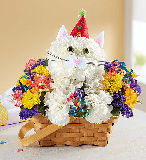 """EXCLUSIVE Every birthday party needs a party animal¦especially one as cute as ours! Our truly original kitty is handcrafted from crisp white carnations and surrounded by a mix of colorful blooms, creating a unique 3D design. Arriving inside a charming handled basket and ready to celebrate€accented with a party hat and colorful curling ribbon€this whimsical whiskered pal is the purr-fect' pick for wishing someone special a day full of fun¦no matter what age they're turning!  Our florists hand-design each arrangement, so colors, varieties and container may vary due to local availability One-sided 3D arrangement of long-lasting white carnations, mini orange carnations, yellow cushion poms and purple statice; accented with variegated pittosporum Crafted in the shape of a cat, complete with ears, eyes and mouth with whiskers Features a festive felt birthday hat and colorful curled ribbon accents Artistically designed in a lined splitwood basket with handle; measures 7""""D Arrangement measures approximately 10.5""""H x 11""""L"""