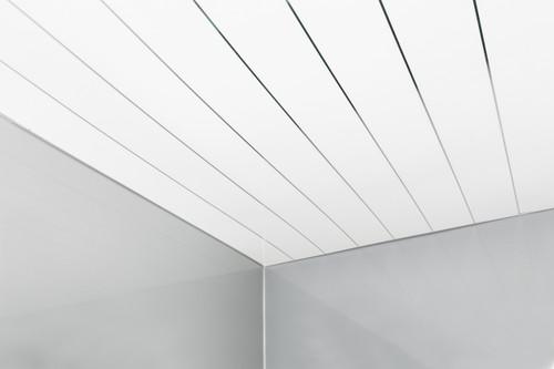 Single Inlay Chrome 5mm Panel - Sample