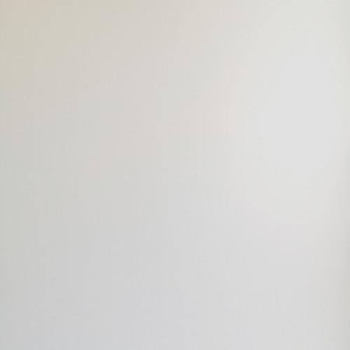 Matt White Wet Wall Panel - 250mm