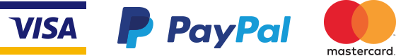 paypal visa payments