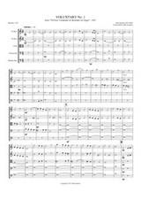 VOLUNTARY I (string orchestra)